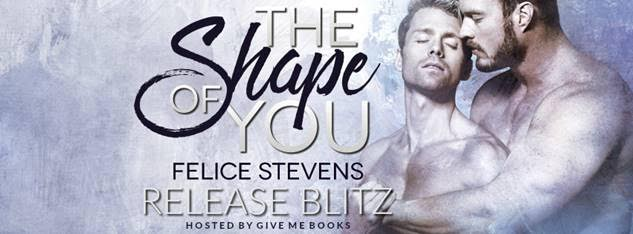 RELEASE BLITZ- The Shape of You by Felice Stevens